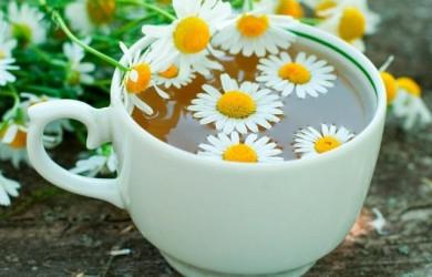 Этот напиток способен предотвратить рак: исключительная польза ромашкового чая